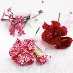 florile-nuntii-tale_8