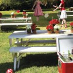 nunta-inspirata-de-picnic_6